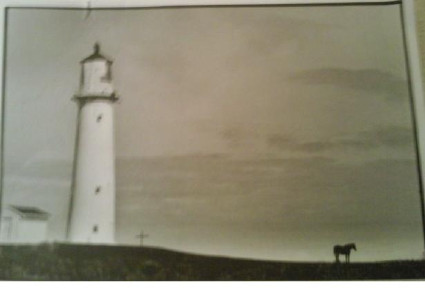 German Martin's NZ N Coast Piccy